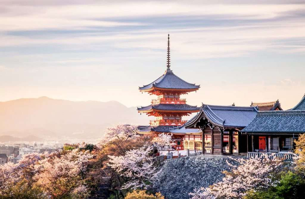 Kyoto Senso Japan